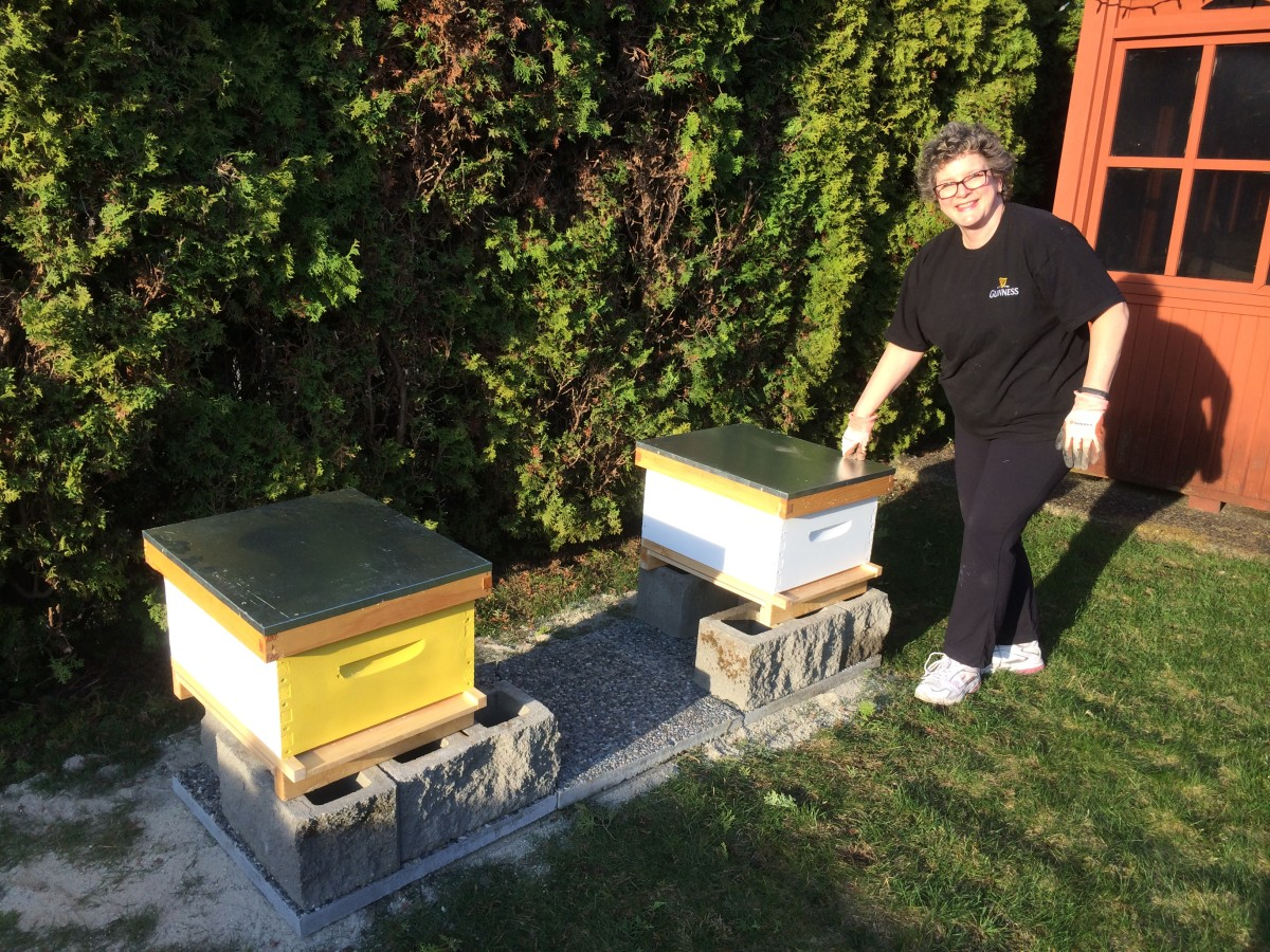The hives are ready, now we just need the bees.